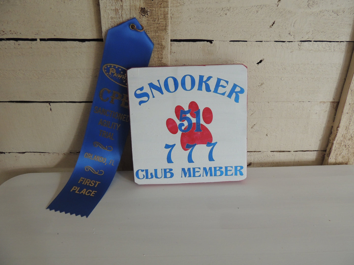 Agility Snooker 51 Club Member