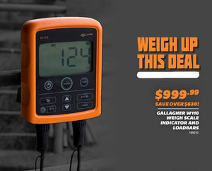 Save loads on the Gallagher W110 Digital Weigh System this month!