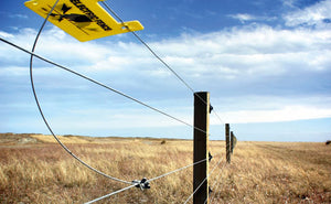 Why is Lightning Protection important for Electric Fence Chargers