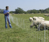 electric poultry netting fence and sheep net