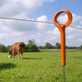 250 Ring Top Posts | Free USA Shipping - Gallagher Electric Fence