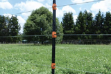 "100, 55"" Insulated Line Posts & Clips 