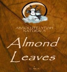 Almond Leaves