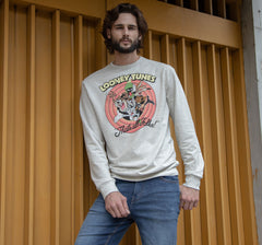 LOONEY TUNES PULLOVER