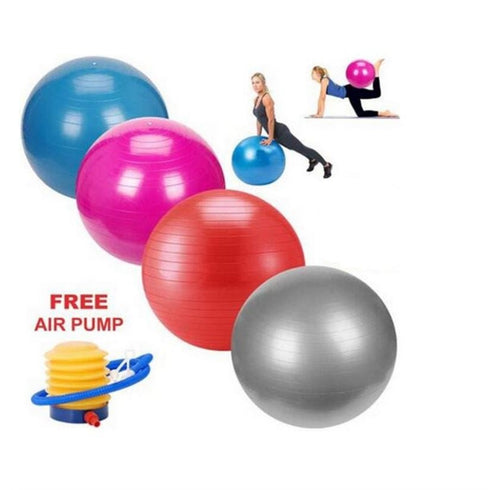 65cm PROFESSIONAL EXERCISE BALL
