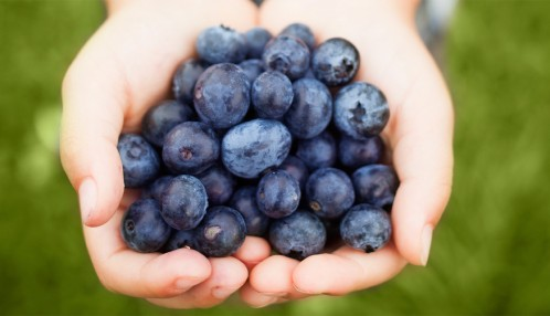 blueberries fight depression