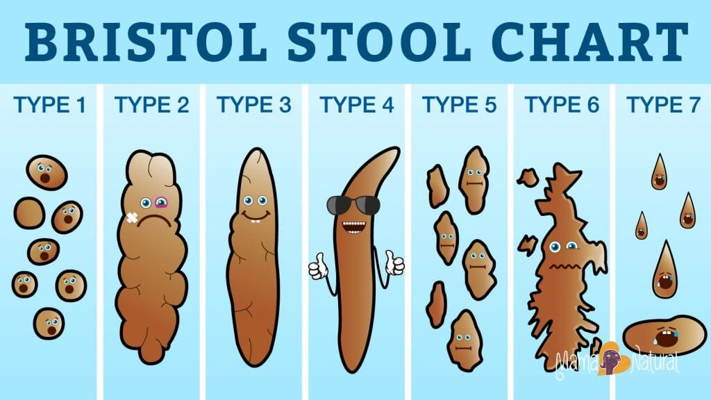 bristol stool chart poop podcast Jacked on the Beanstalk vegan podcast