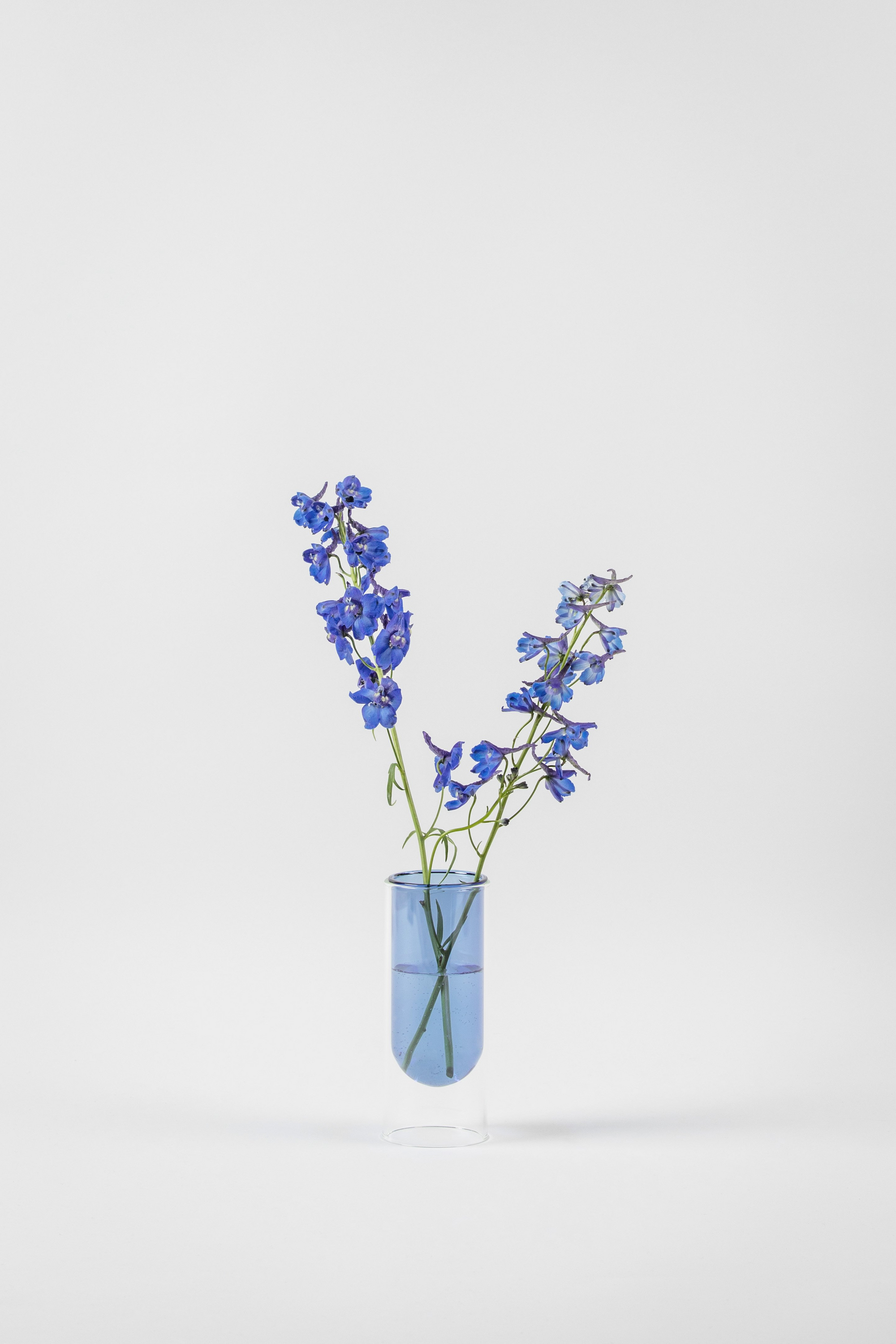 about form and function - Flower tube - blå - vase - nordcraft