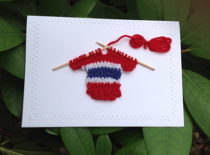 Blank Greeting Card - Red, Blue, & White Hockey Sweater