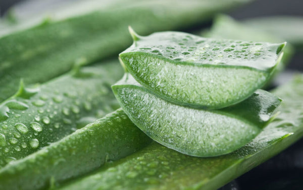 7 Reasons Aloe Makes Awesome Skincare