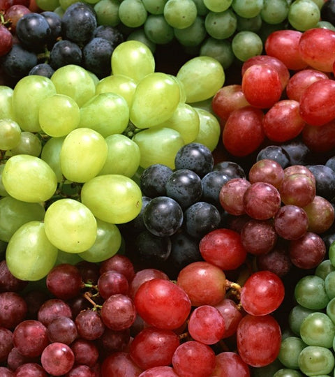7 Reasons Grape Seed Oil is Essential to Great Skin