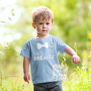 Mr ONEderful First Birthday tshirt