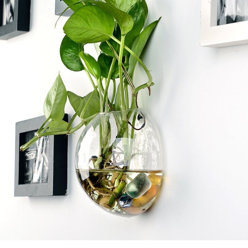 Glass Vase Wall Hanging Hydroponic Terrarium Fish Tanks Home Decor