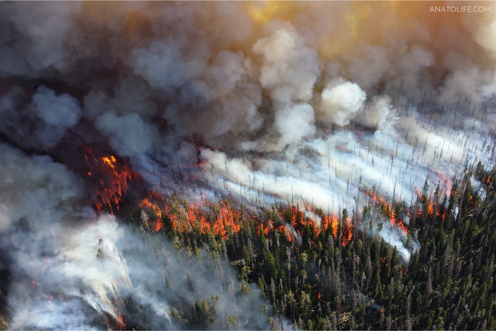 Wildfires: A Perspective from a Firefighter & Indigenous Peoples