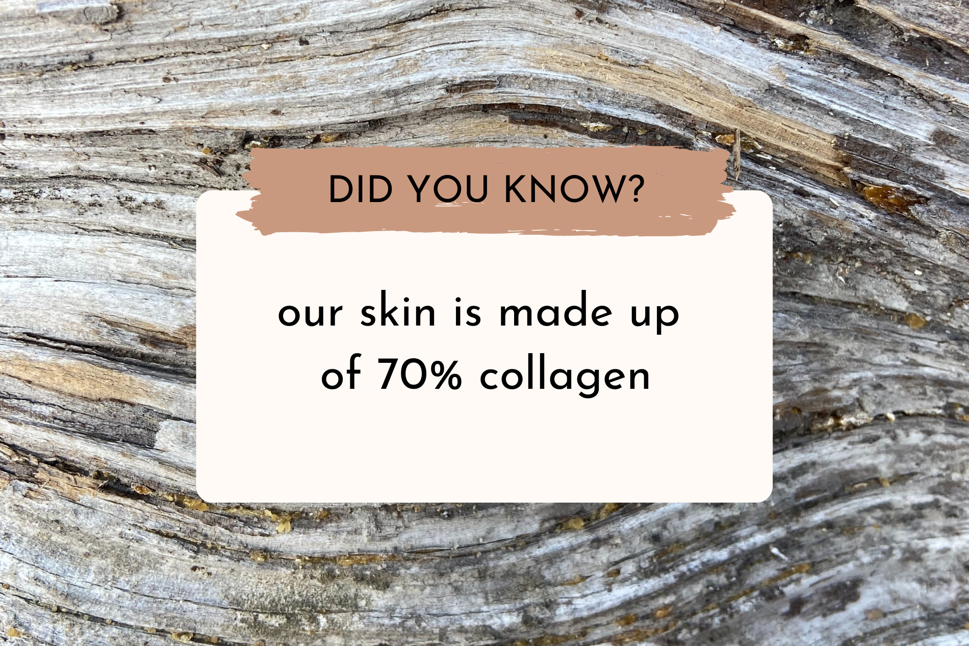 Did you know our skin is made up of 70% collagen? By Anato Regenerative Skincare