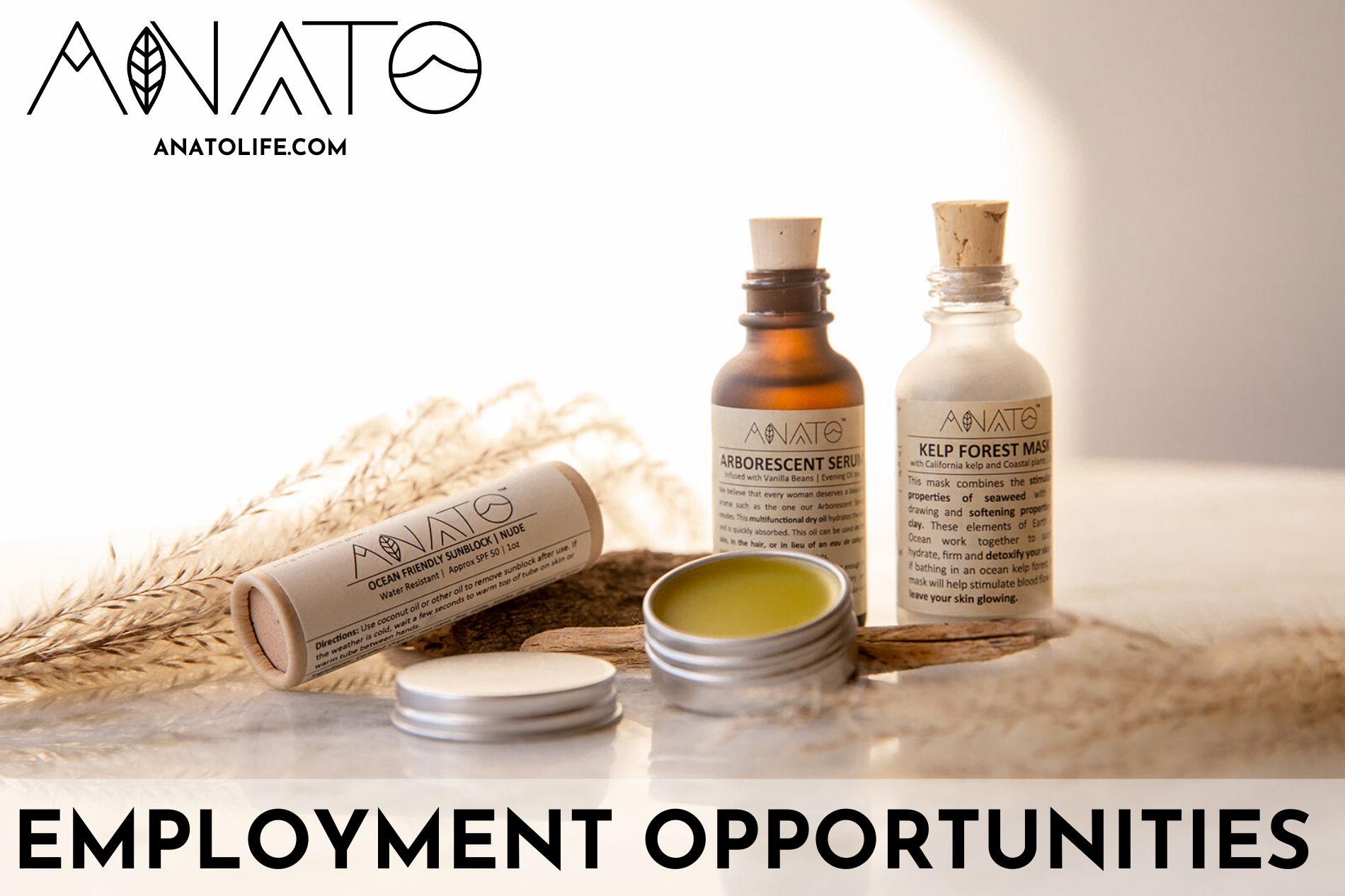 employment opportunities at anato _ regenerative wellness