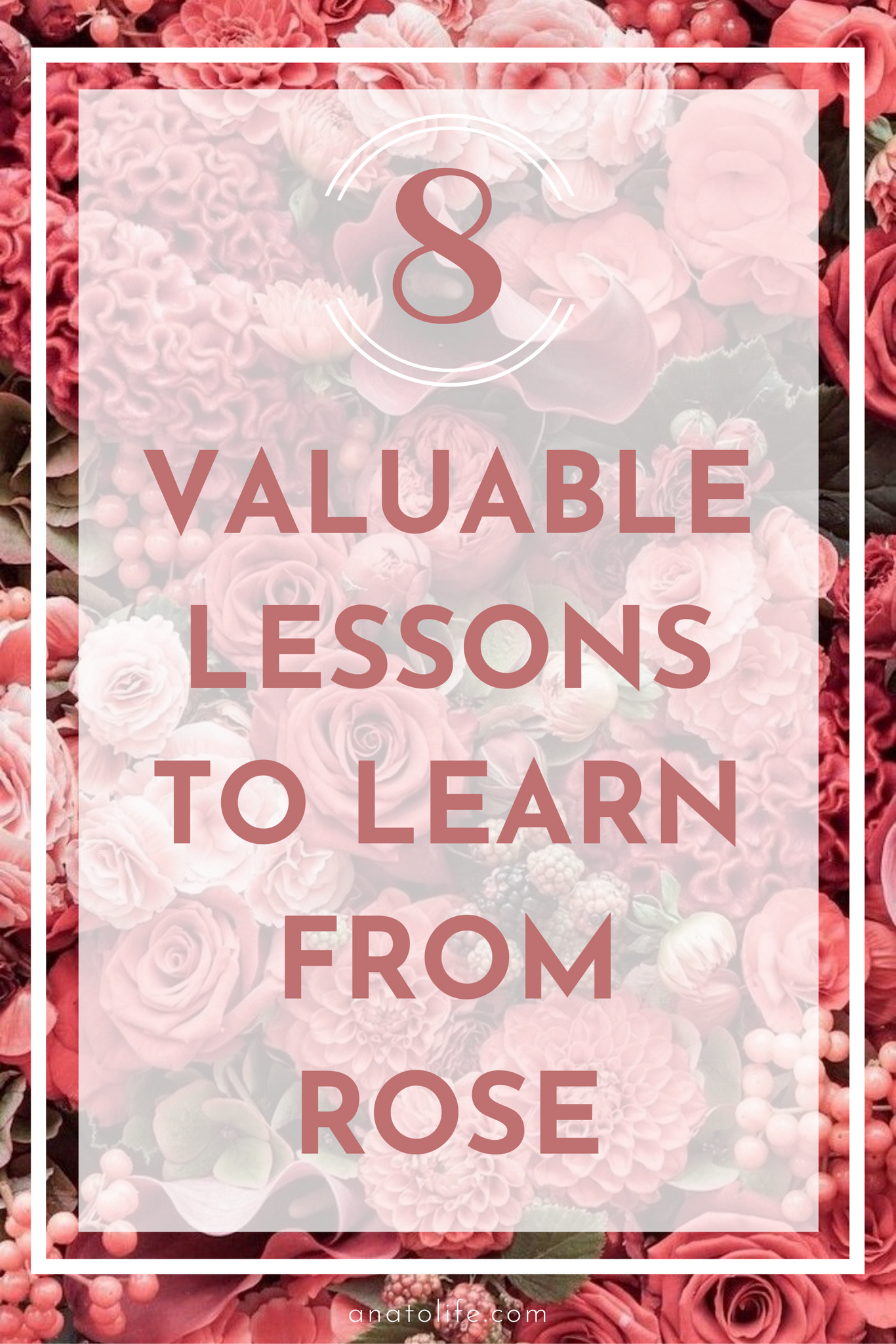 8 Lessons From Rose | By Anato Regenerative Skincare From Trees