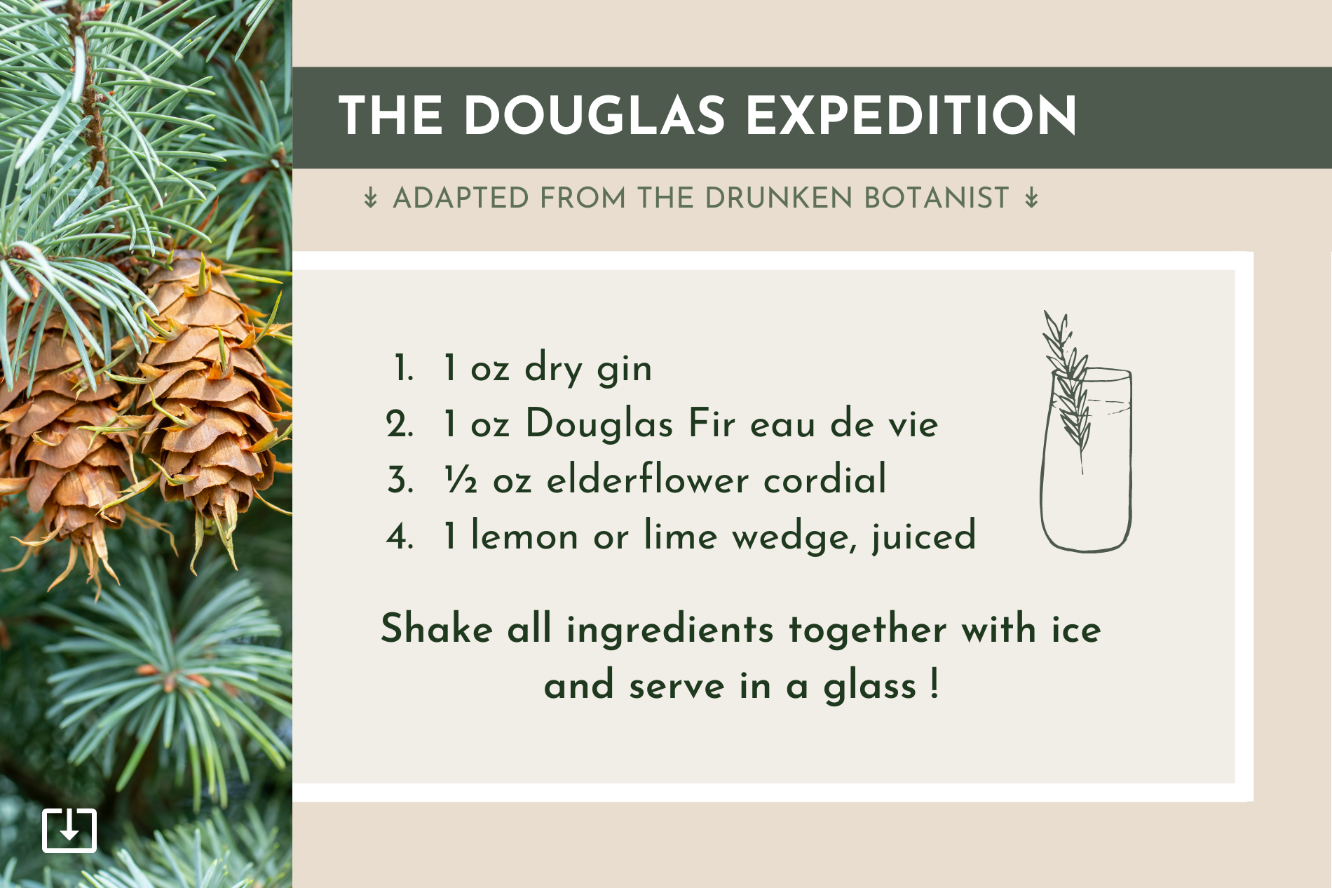 Perennial Kitchen Cocktail Recipe with edible trees