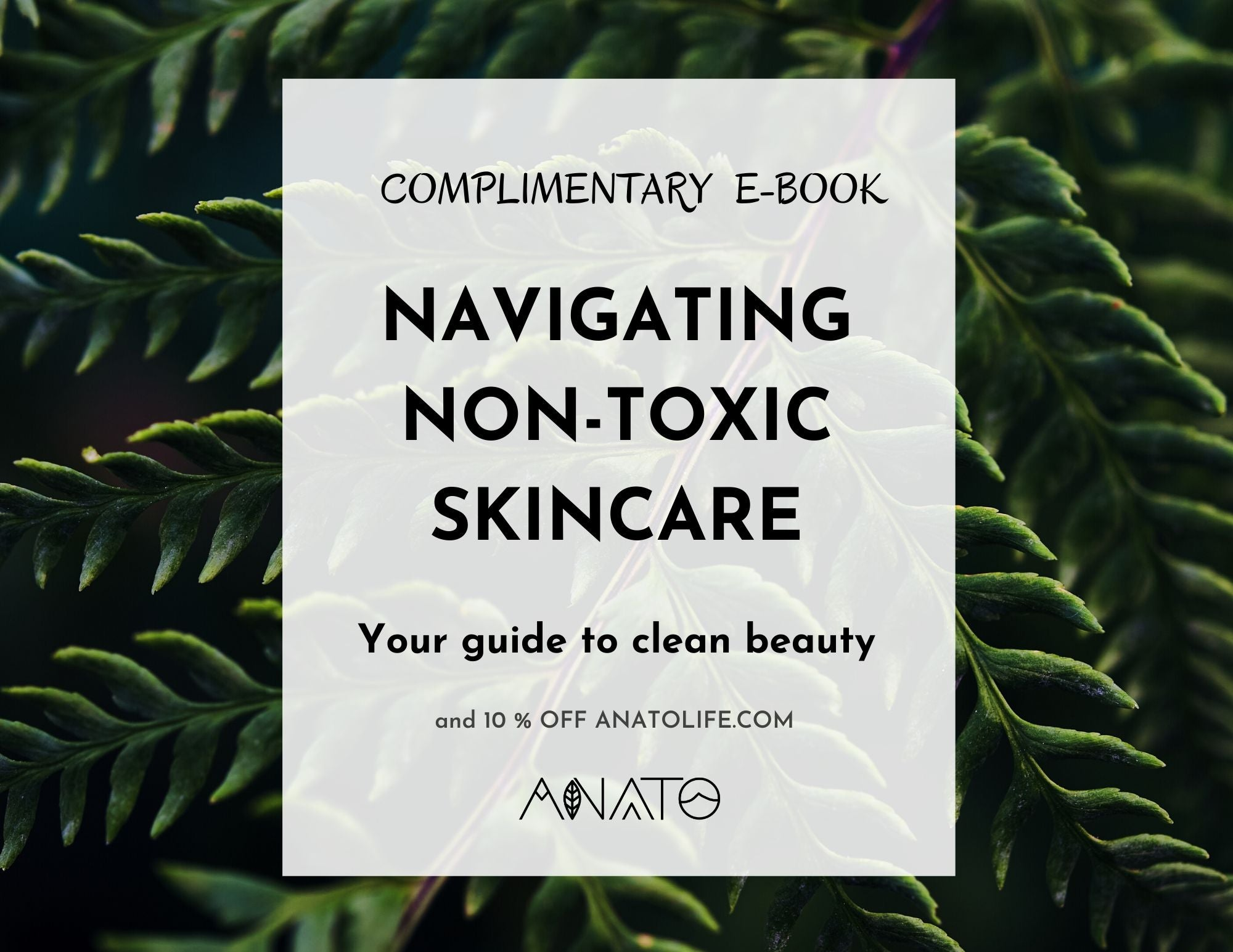 guide to clean beauty_ navigating non toxic skincare