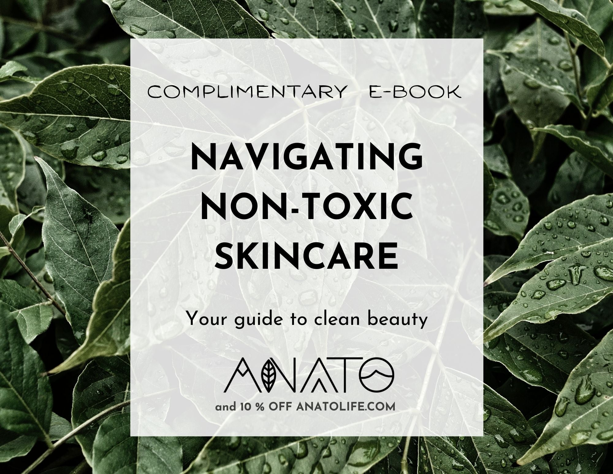 non toxic skincare guide _ clean beauty guide