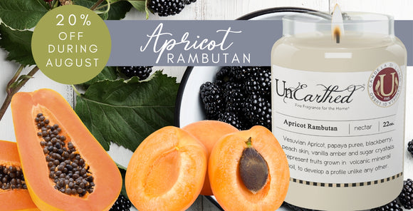 apricot rambutan highly scented fall candle on sale