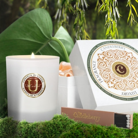 UE -  PRODUCT - Willow - luxury scented premium candles high end essential oils coconut vegetable vegan white frosted glass recycle upcycle reusable (1)23456