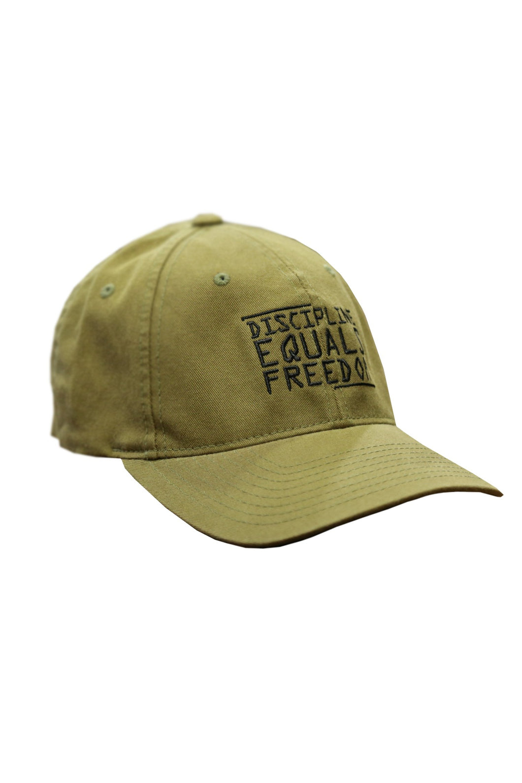 FLEX FIT HAT - DISCIPLINE EQUALS FREEDOM