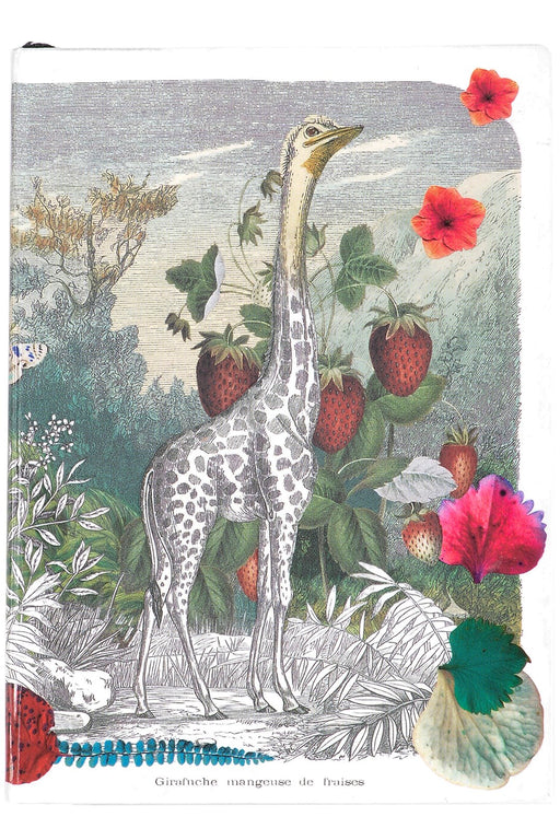Wild Nature A6 Softcover Notebook By Christian Lacroix