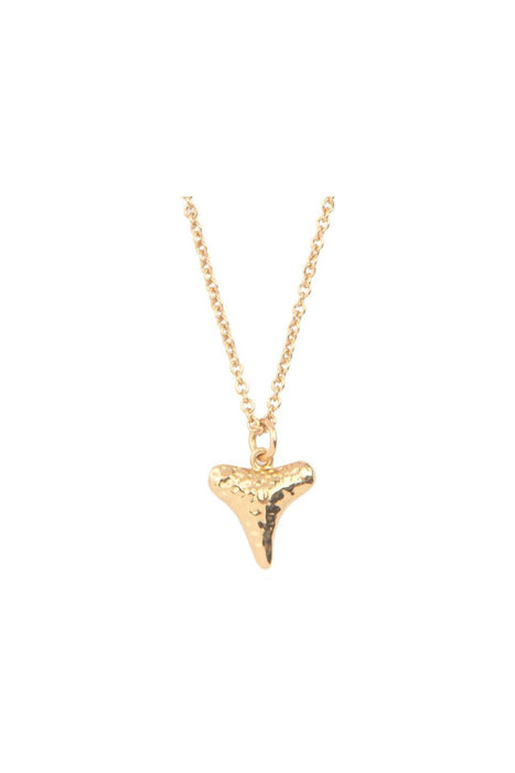 all the luck in the world tooth necklace gold nyaklanc