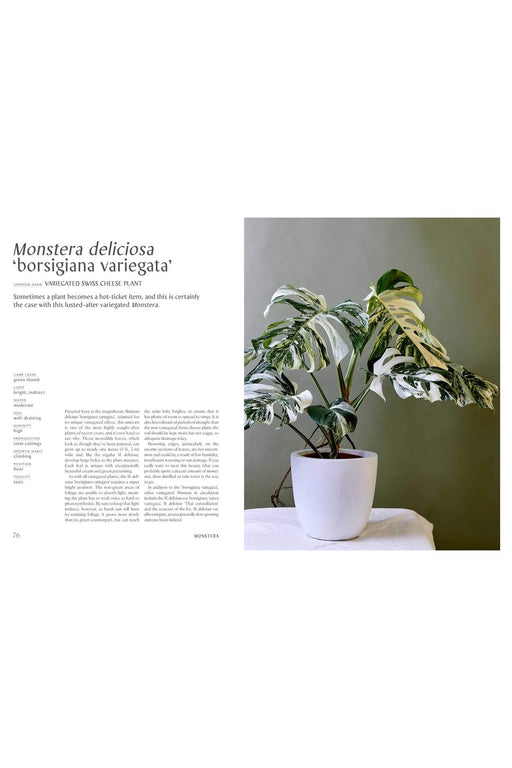 Plantopedia: The Definitive Guide To Houseplants By Lauren Camilleri And Sophia Kaplan