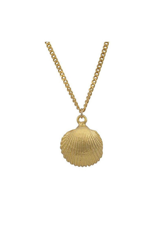 Scallop Shell Chain Necklace