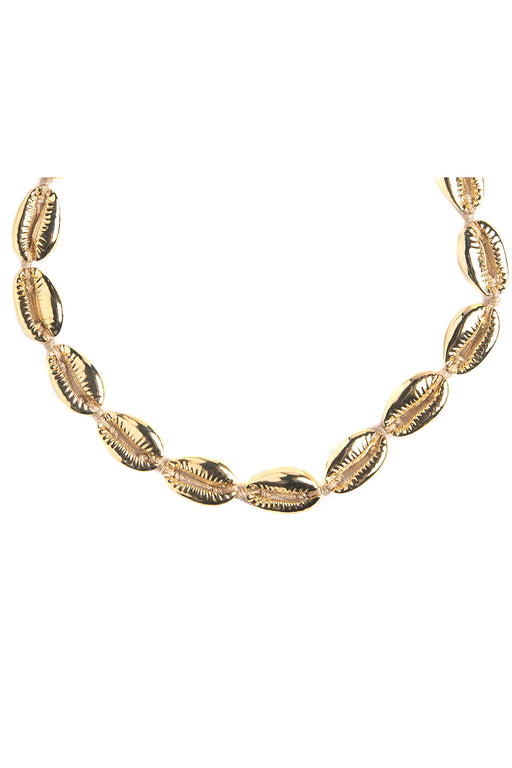 The Gold Cowrie Shell Choker