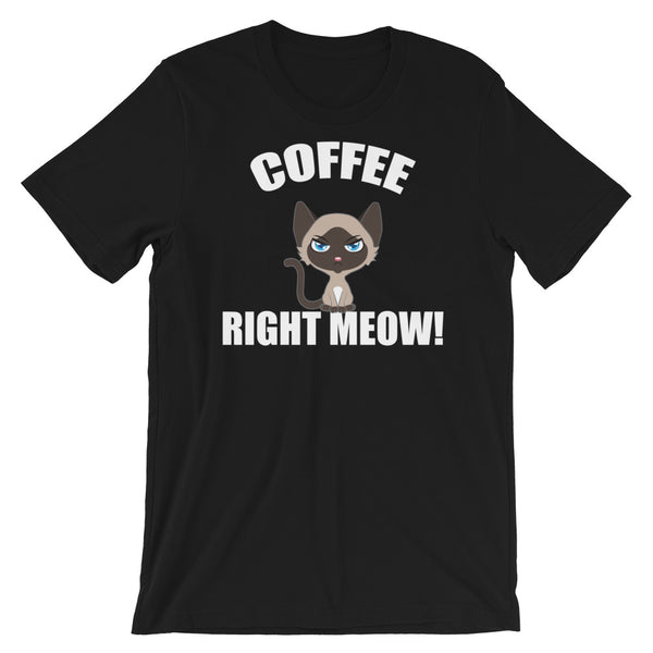 Coffee, Right Meow! Funny Coffee Cat T-Shirt