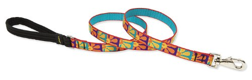 "LupinePet Originals 3/4"" Crazy Daisy 4-foot Padded Handle Leash for Medium and Larger Dogs"