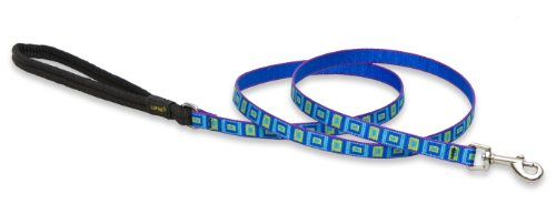 "LupinePet Originals 1/2"" Sea Glass 6-foot Padded Handle Leash for Small Pets"