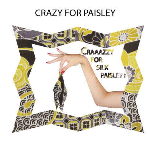 Crazy For Paisley