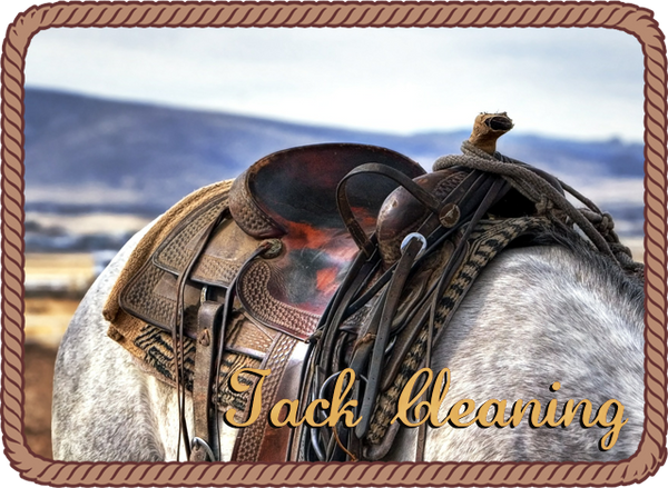 Tack Cleaning Services offered by Rhinestone Ranch - Washington