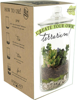 Syndicate Sales Inc. - Diy Terrarium Kit