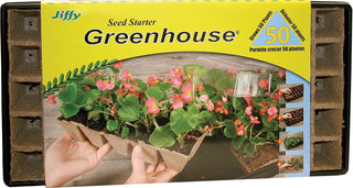 Jiffy/ferry Morse Seed Co - Seed Starter Strip N Greenhouse Tray Superthrive (Case of 16 )