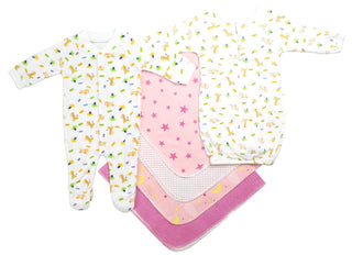 Newborn Girls 6 Piece  Set