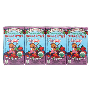 R.w. Knudsen - Sensible Sippers - Organic Berry - Case Of 5 - 4.23 Fl Oz.