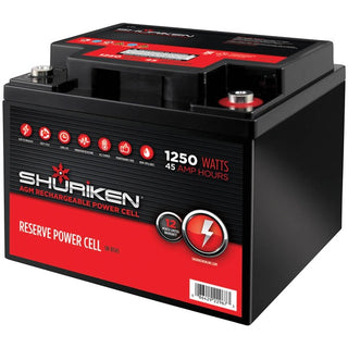 Reserve Power Cell AGM 12-Volt Starting Battery (1,250 Watts, 45Ah)