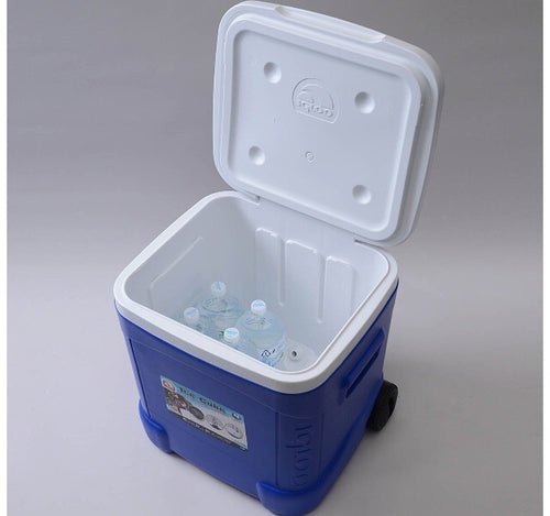1Stop Festy Supply Shop  Igloo Cube Style Festival Cooler