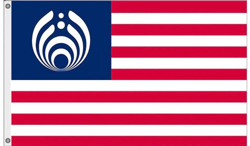 Bassnectar American Festival Flag - 1Stop Festy Supply Shop