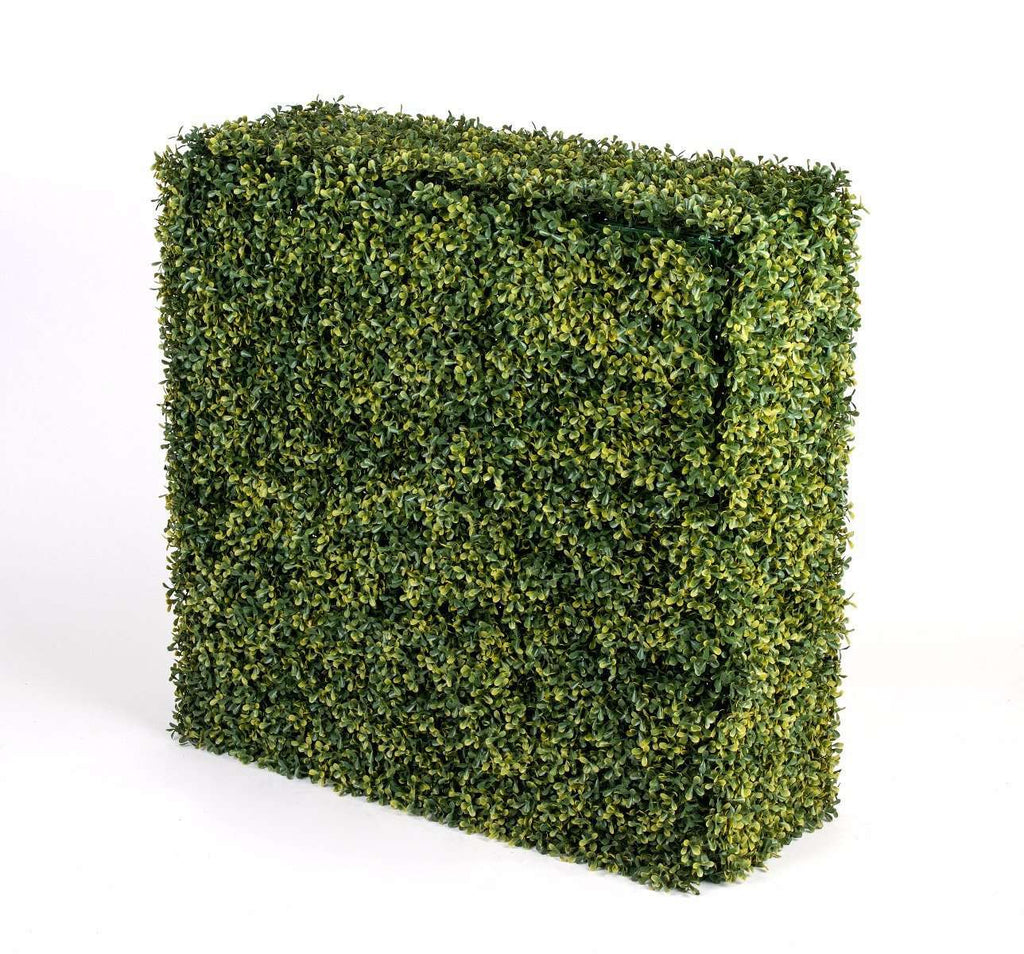 Portable UV Yellow Boxwood Hedge UV Stabilised 75cm X 75cm