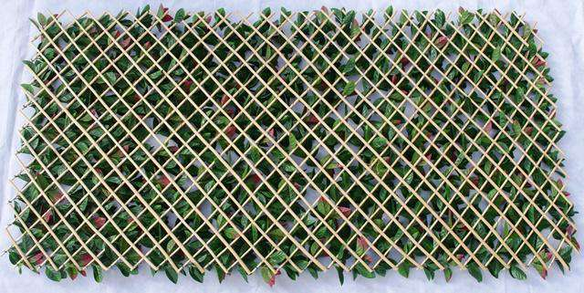 Photinia Hedge Extendable Trellis / Screen 2 Meter By 1 Meter UV Stabilised - Desirable Home Living