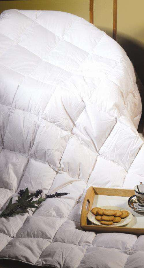 Queen Quilt - 100% White Goose Feather - Desirable Home Living