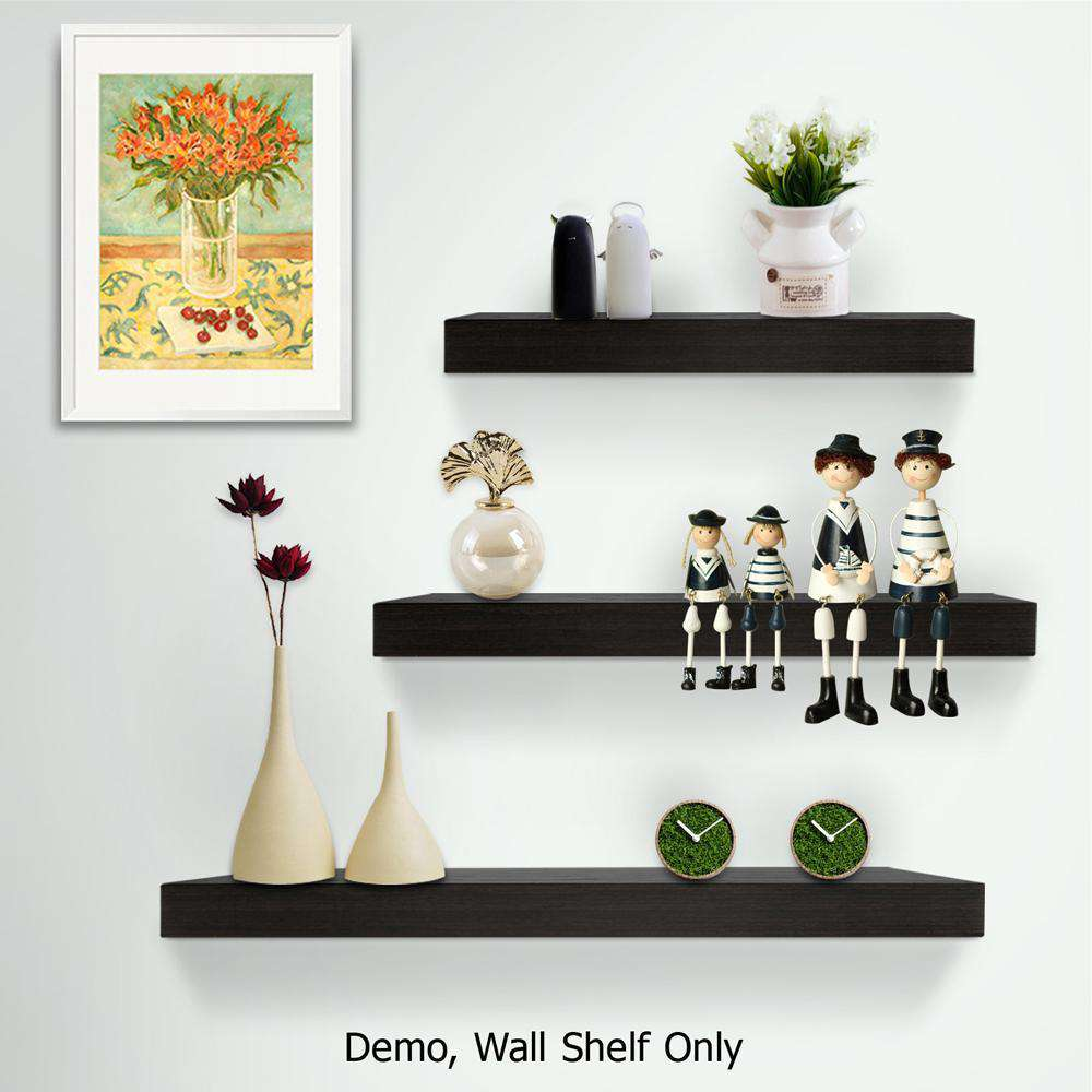 3 pcs Wall Floating Shelf Set Bookshelf Display Black - Desirable Home Living