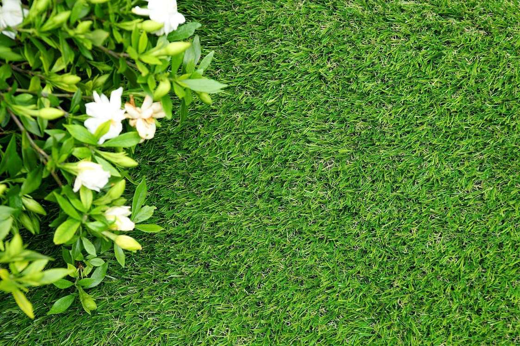 Synthetic Artificial Grass Turf 5 sqm Roll - 35mm - Desirable Home Living