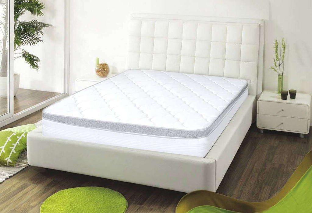 Latex Foam Euro Top Spring Mattress QB